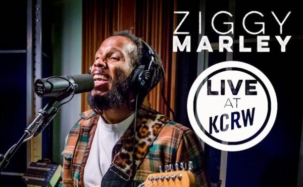 Ziggy-Marley-art-1-1024x1024
